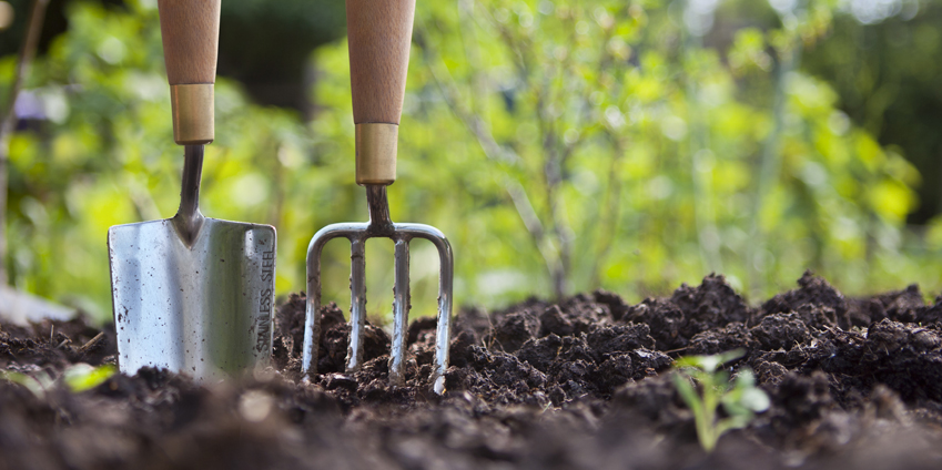 , How to Care for Garden Tools, Redwood Nursery & Garden Center, Redwood Nursery & Garden Center