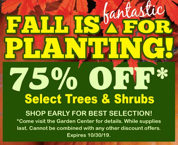 , Fall is Fantastic for Planting!, Redwood Nursery & Garden Center, Redwood Nursery & Garden Center