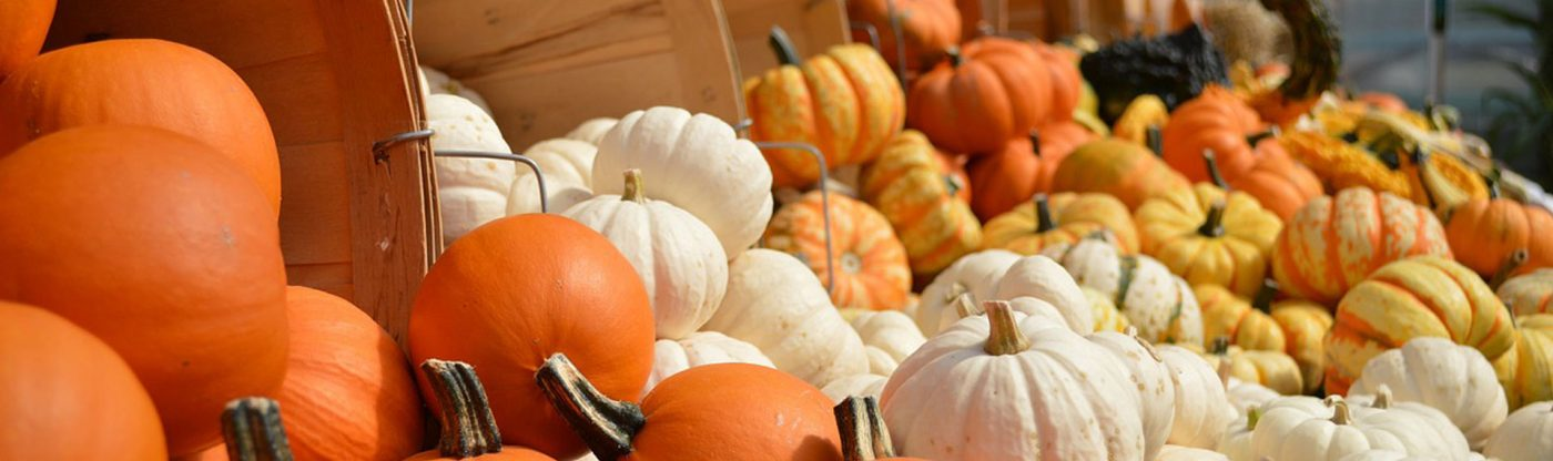 , Fall Display Decorating Ideas, Redwood Nursery & Garden Center