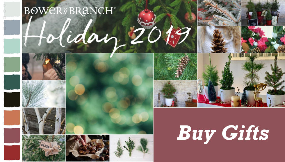, Holiday Gifts from Bower & Branch, Redwood Nursery & Garden Center, Redwood Nursery & Garden Center