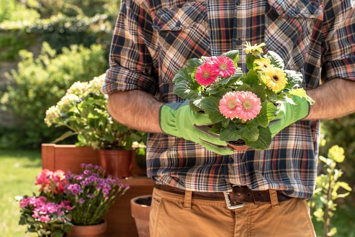 , Why gardening during a pandemic is so comforting, Redwood Nursery & Garden Center, Redwood Nursery & Garden Center